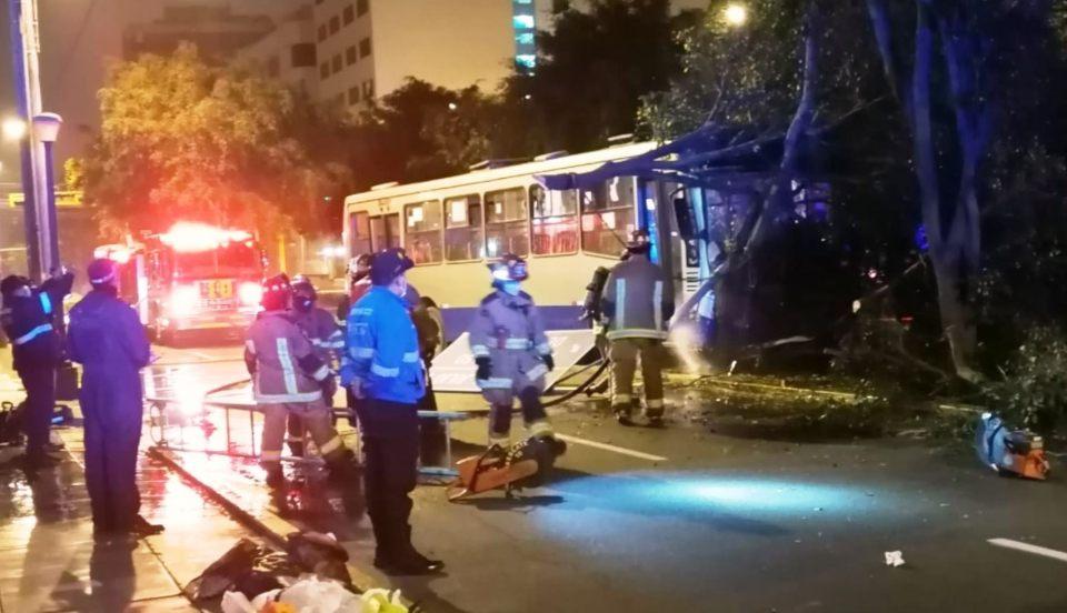 ATU anuncia que las dos mujeres heridas tras choque de bus contra un árbol