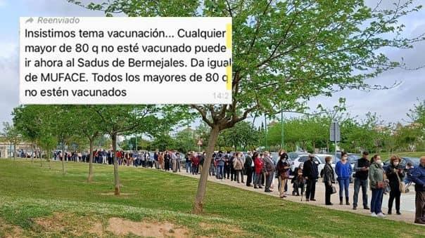 España: Miles van a vacunarse contra el COVID-19 tras recibir falso mensaje por WhatsApp